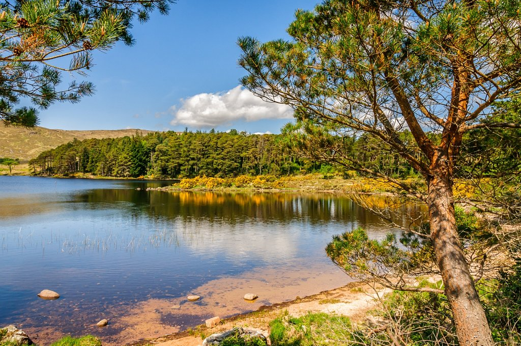 Glenveigh National Parc